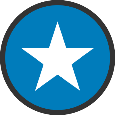 authority website strategy icon